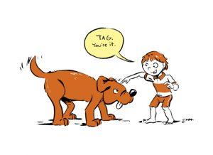 tag, dog