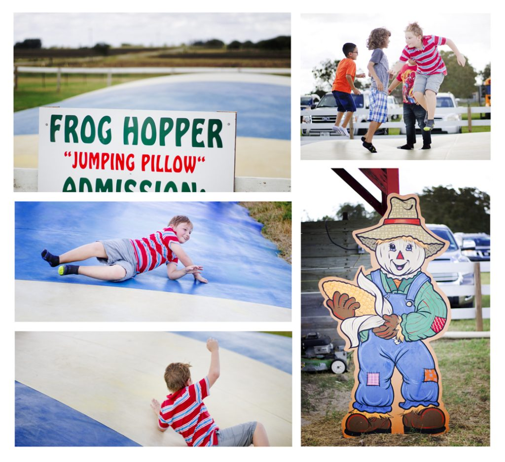 frog hopper jump cushion